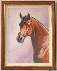 A framed Oil portrait of an arab horse