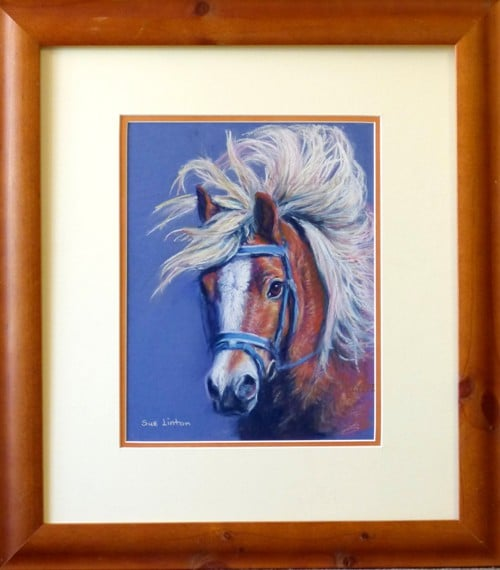 The framed portrait of a Halflinger pony