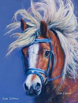 A pastel Pencil drawing of a Halflinger pony with an amazing mane