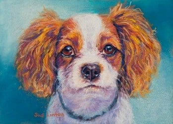 A custom dog portrait painted from a photo