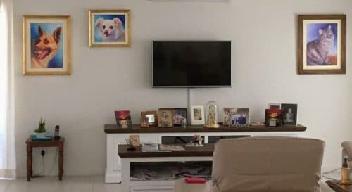 Anne's memorial portraits of all 3 of her pets look great on her wall either side of the Tv where she can see them every day.