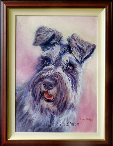 The custom framed portrait of a the Schnauzer puppy.