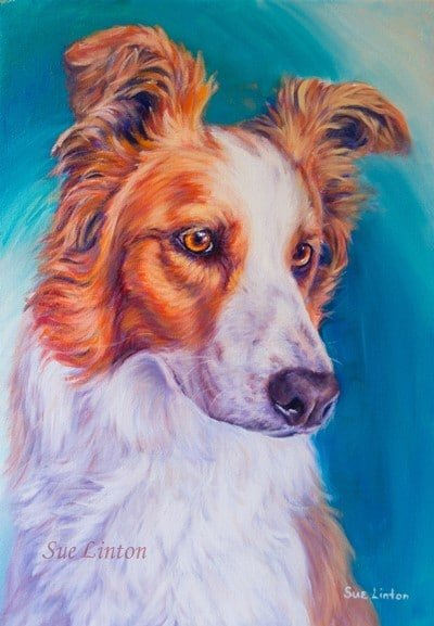 A colourful realistic Oil portrait of a Border Collie dog