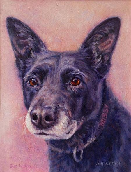 An Oil pet portrait of a kelpie cross dog