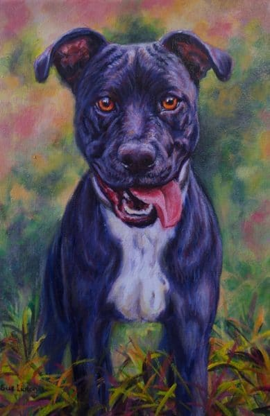 A colourful Oil portrait of a Staffy cross dog