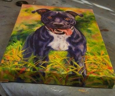 nugget canvas