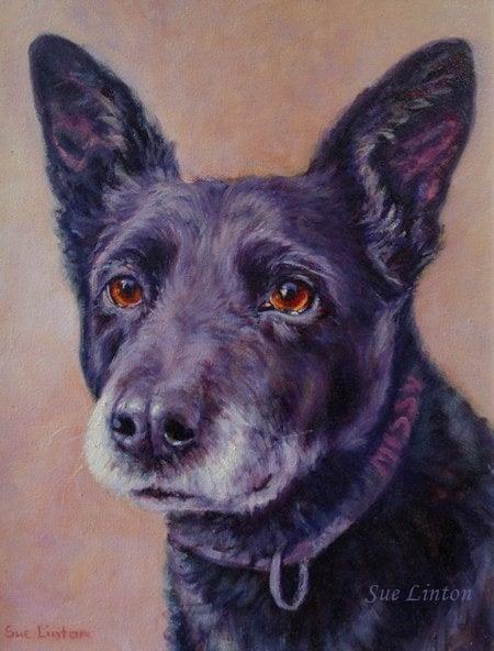 The second Oil memorial pet portrait of Missy